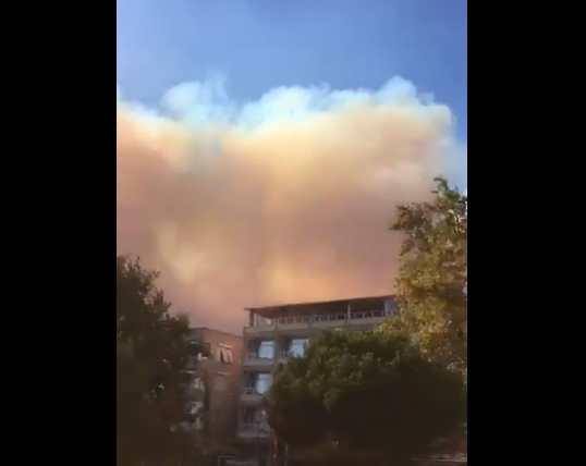Marmara Adası'ndaki orman yangını kontrol altına alındı