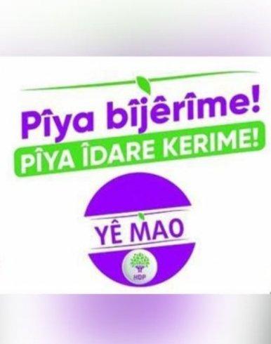 """Polis, HDP'nin """"Yê Mao (Bizimdir)"""" afişini """"Maocu"""" zannedip sakıncalı buldu"""