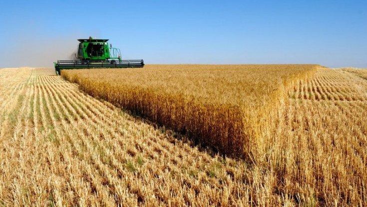 Tarıma teşvik son 20 yılın en düşük seviyesinde 92