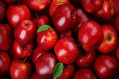 19 ton elma Rusya'dan döndü!
