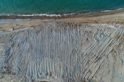 Antalya'da tarla gibi sürülen caretta caretta kumsalında kaybolan yuva sayısı 100'ü geçti
