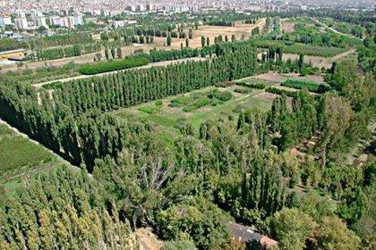Atatürk Orman Çiftliği, arazisinin yarıya yakınını otoyollar ve yapılaşmalarla kaybetti