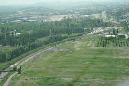 Atatürk Orman Çiftliği'ndeki 81 bin metrekare alan piknik alanı olarak kiraya verilecek