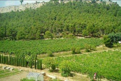 Atatürk Orman Çiftliği'nden Özel Kuvvetler'e arazi
