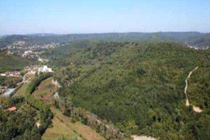 Beykoz Dereseki'deki tarım arazisi imara açıldı