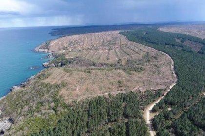 Çevre Bakanlığı'ndan, Sinop'u nükleer çöplüğe çevirecek adım