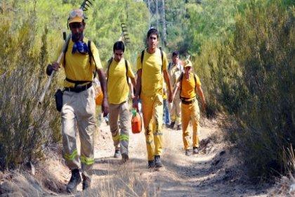 CHP, orman işçilerinin işten çıkarılmasını Meclis'e taşıdı: 'Saray'a atananlara kaynak var, işçiye yok!'