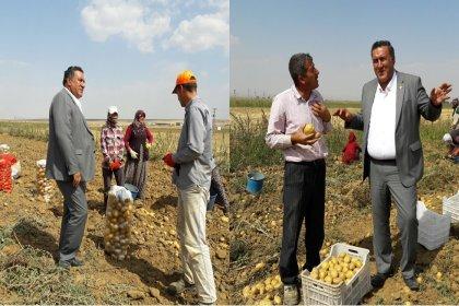 CHP'li Gürer: Çadırlarda domates, patlıcan satarak tarımın sorunları çözülemez