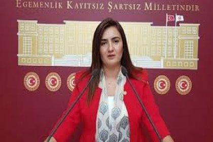 CHP'li Kılıç: 'Tarım arazilerimizi jeotermale kurban etmeyin'