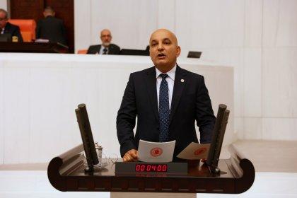 CHP'li Polat'tan 'Karaburun nergisleri için önlem alın' çağrısı