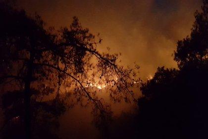 Dalaman ve Göcek'teki yangın kısmen kontrol altına alındı