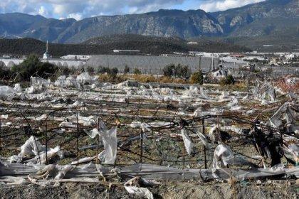 Doğal afetlerden 70 ilde 19 milyon dekar tarım alanı etkilendi