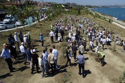 Dünya Çevre Günü'nde Büyükçekmece'de 1001 zeytin fidanı dikildi