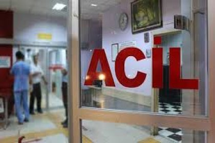 Erzincan ve Kastamonu'da 20'si çocuk 128 kişi hastanelik oldu