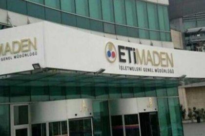 Eti Maden 5 müdüre 87 bin lira maaş ödüyor