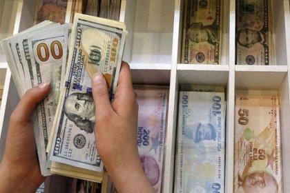 G-20 sonrası dolar ve euro'da son durum
