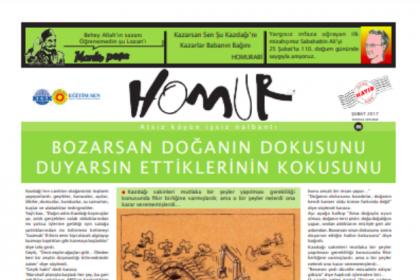 Homur Mizah ve Karikatür Grubu'ndan Kazdağları'na destek mesajı