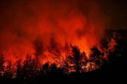 'İktidar maliyet yüksekliği nedeniyle İzmir'in yanışını seyrediyor'
