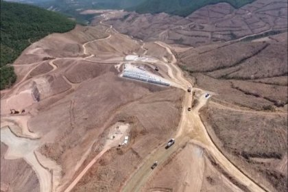Kaz Dağları'nda ağaç katliamı yapan şirkete 'süper' teşvik