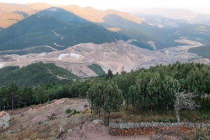 Kaz Dağları'nda çevre katliamı yapan şirketten skandal yorum: Protestolar siyasi amaçlı
