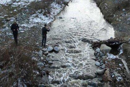Kütahya'da Balıklı Dere'den su içen hayvanlar, yaşamını yitiriyor