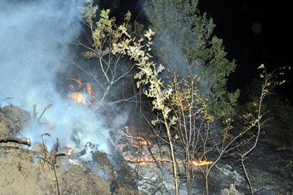 Malkara'da ormanlık alanda yangın: 200 dönümlük alan kül oldu