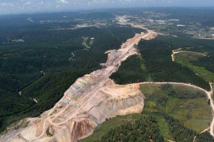 Projenin ÇED raporunda '2,5 milyon ağaç kesilecek' denmişti, 3. Havalimanı için 13 milyon ağaç kesilmiş!