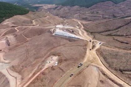 TEMA: Kazdağları'nda en az 195 bin ağaç kesildi