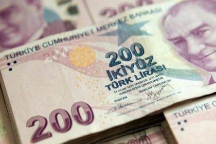 'Türk Lirası tehlikeli eşikte'