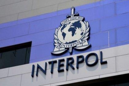 Türkiye'den Almanya'ya bin 252 Interpol kararı: 'Türkiye Interpol'ü kötüye kullanıyor'