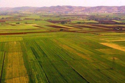 Türkiye'nin Sudan'da tarım yapmak için kiraladığı alan 5 yıldır kullanılmıyor!
