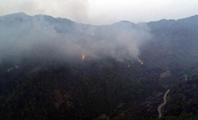 Antakya'da orman yangıını