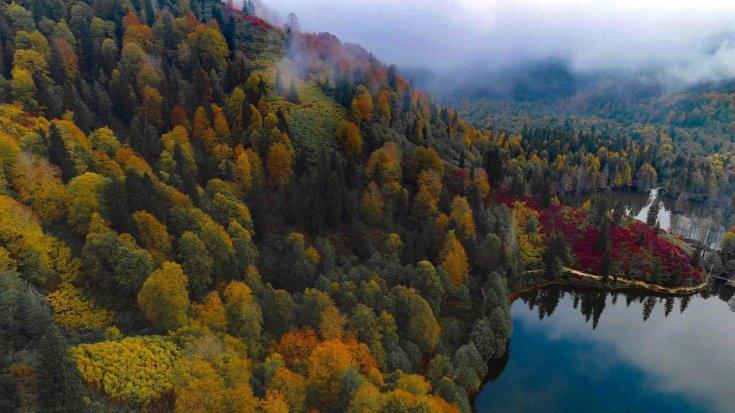 Artvin'de sonbaharla birlikte doyumsuz görüntüler