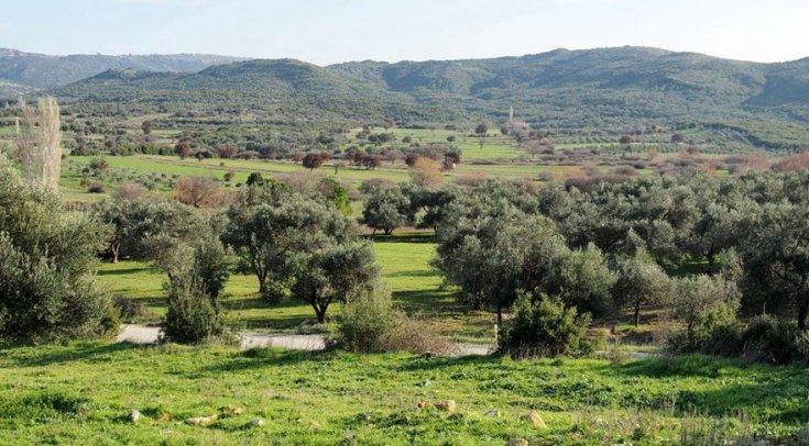 Ayvalık Kent Konseyi'nden Karakoç Barajı'na karşı basın açıklaması