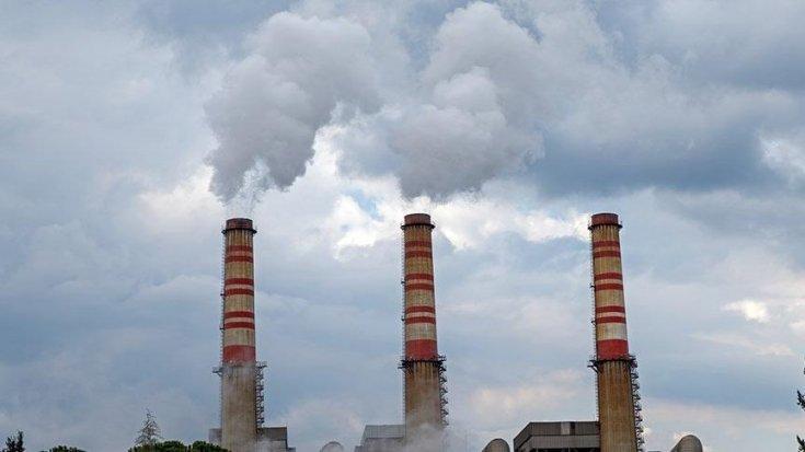 Bilirkişiden termik santral için 'doğa' dersi: Kamu yararı yok, dereler kurur