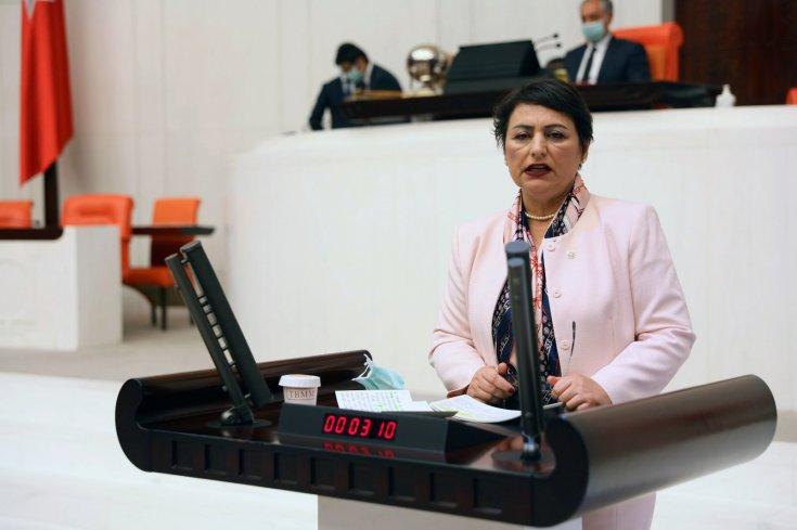 CHP'li Şevkin: 'Adana, sahra hastanesine ihtiyaç duyabilir'