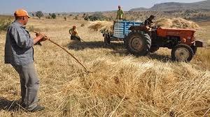 Çiftçi başına düşen kredi borcu 49 bin TL'ye dayandı