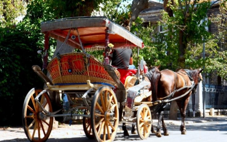 İBB, fayton plakalarını ve atları satın aldı; Adalar'da ulaşım elektrikli araçla yapılacak