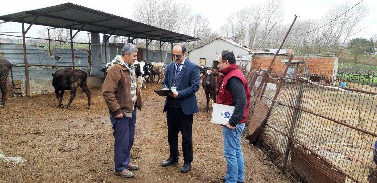 İBB: İstanbul'un tarım ve hayvancılık veri tabanı hazır