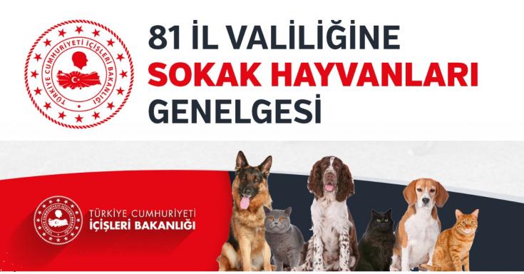 İçişleri Bakanlığından Valiliklere Sokak Hayvanları Genelgesi
