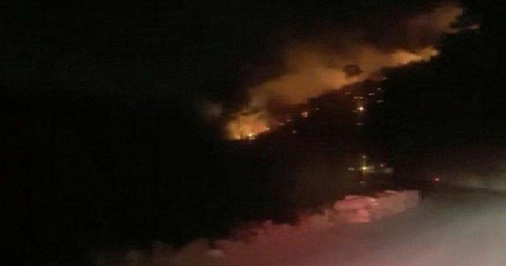 İzmir Menderes'te orman yangını
