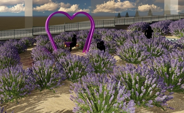İzmit Belediyesi 'Lavanta Parkı' kuruyor