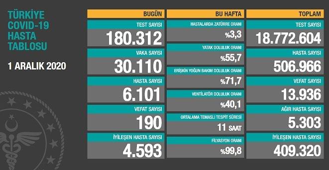 Koronavirüs'ten Türkiye'de 1 Aralık'ta 190 toplamda 13.936 kişi öldü