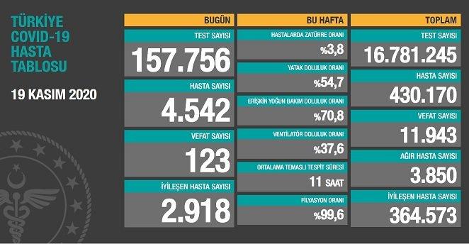 Koronavirüs'ten Türkiye'de 19 Kasım'da 123 toplamda 11.943 kişi öldü