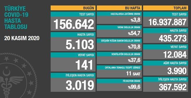Koronavirüs'ten Türkiye'de 20 Kasım'da 141 toplamda 12.084 kişi öldü