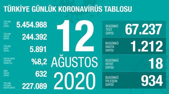 Türkiye'de 12 Ağustos'da Covid_19'dan 18 toplamda 5.891 kişi öldü
