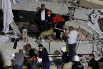 AFAD İzmir depremine ilişkin son duyurusunda: '1'i boğulma sonucunda olmak üzere toplam 25 vatandaşımız hayatını kaybetmiştir 804 vatandaşımız yaralanmıştır'
