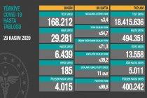 Koronavirüs'ten Türkiye'de 29 Kasım'da 185 toplamda 13.558 kişi öldü