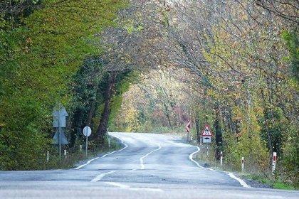 9 kilometrelik ağaç tünel