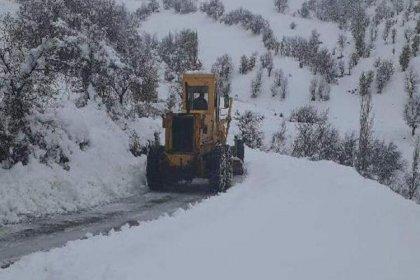 Adıyaman'da 111 köy ve mezra yolu, kardan kapandı